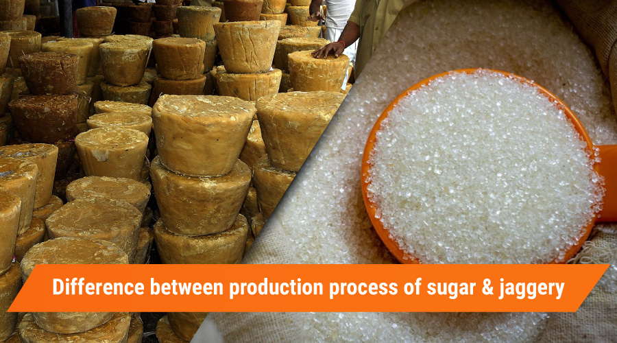 Difference between production process of sugar and jaggery