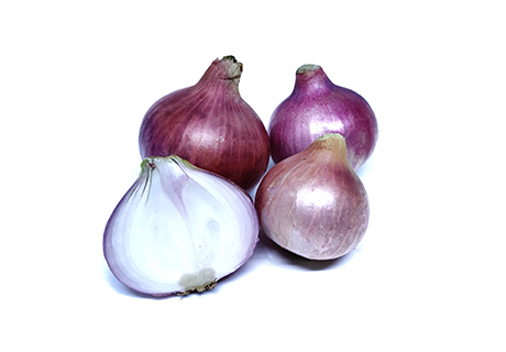 Onion / Kanda