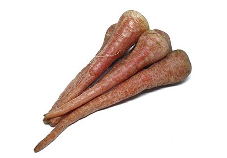 Carrot / Gajar