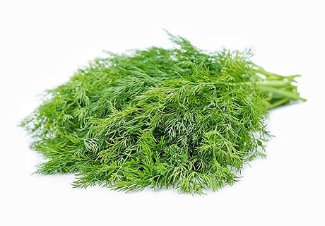 Organic Dill/Shepu